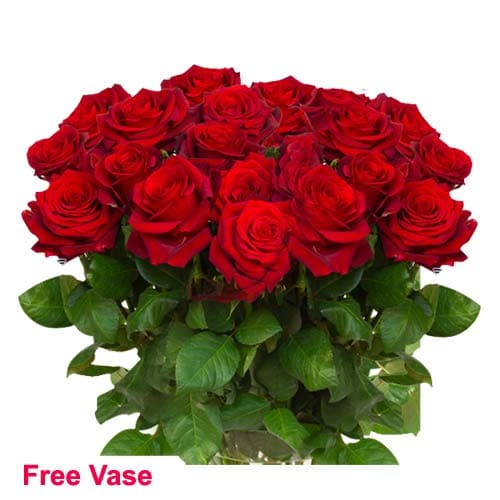 Magical Color of Love Red Rose Bouquet in a Glass Vase