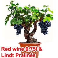 Grape-vine & red wine set with Lindt Pralinés