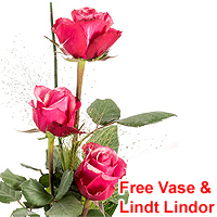 Delightful Composition of Pink Roses in a Vase with Lindt Lindor<br>