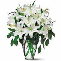 Delicate Bunch of 10 White Lilies