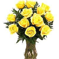 12 Yellow Roses to Germany